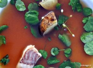 zupa rybna z wódką z ziemniaków